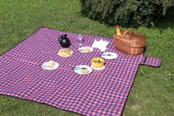 Picknickdecke-Outdoordecke-isoliert-faltbar-00000225-100mSJzGI5YIeemi